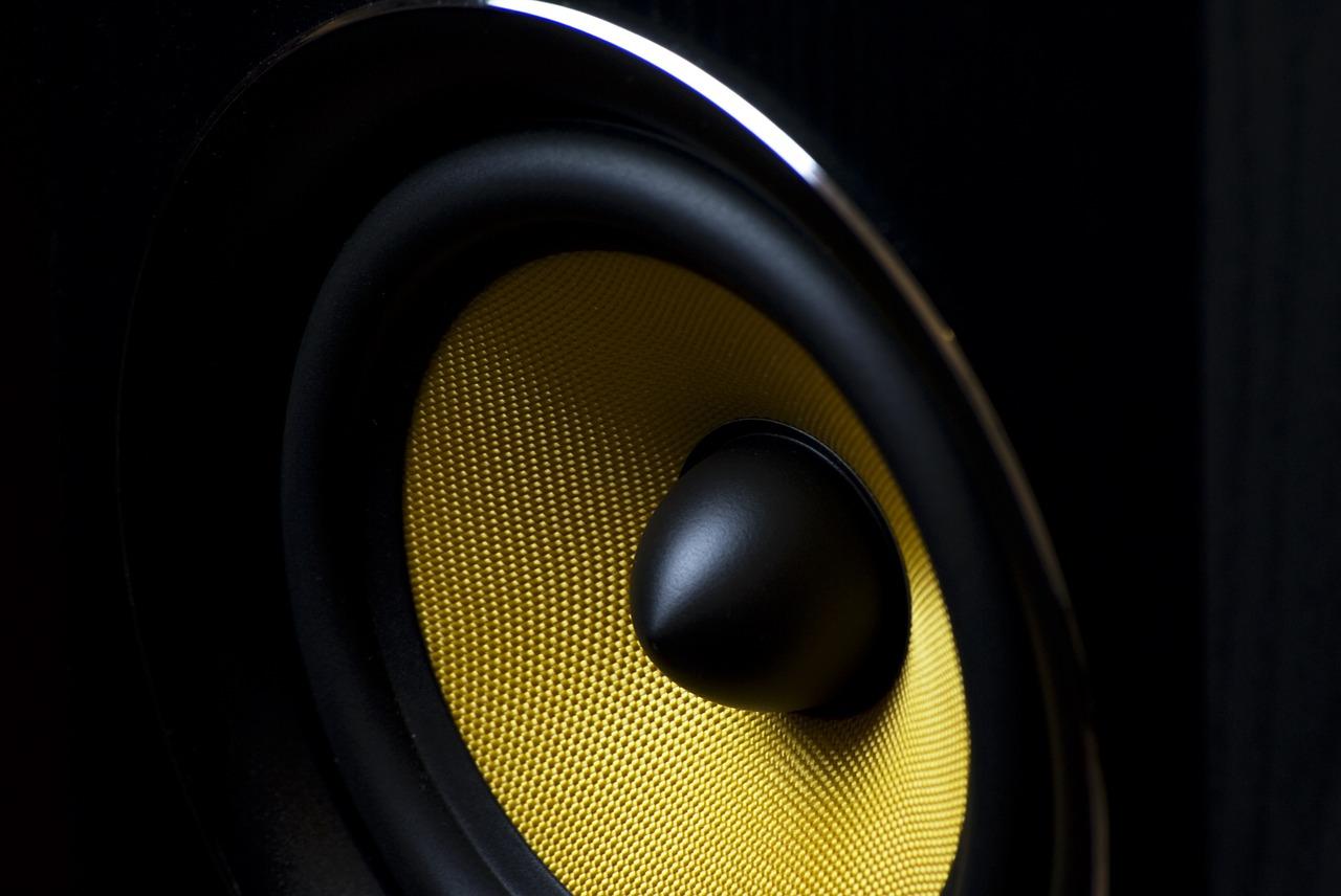 DS18 Speaker Review